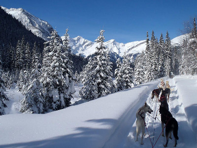 Canadian Rockies Winter Rail Wonderland | VIA Rail