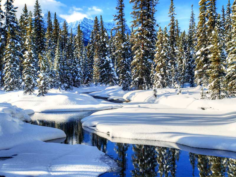 Christmas in the Canadian Rockies Winter Rail Vacations | Bow River