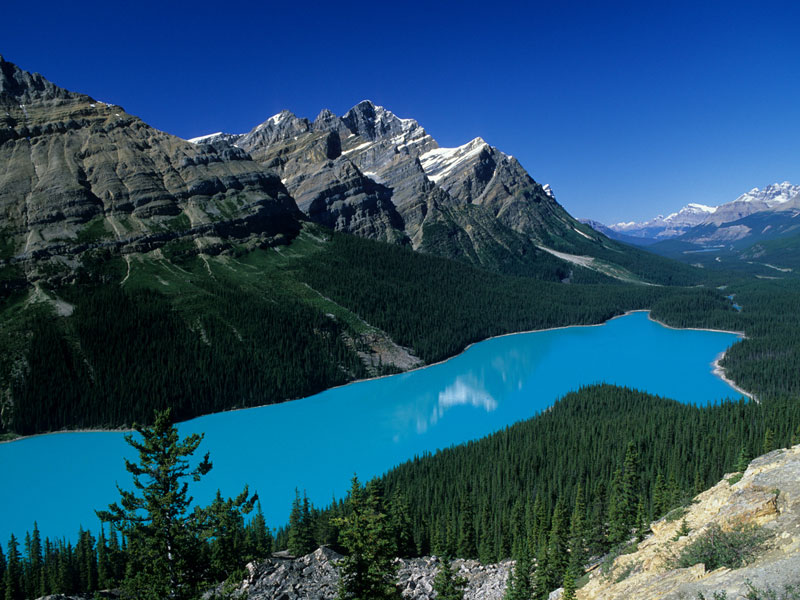 Spectacular West Train to the Canadian Rockies | Peyto Lake Icefield Parkway
